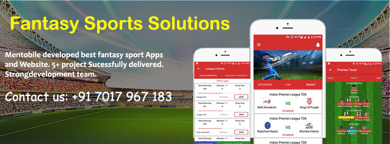 fantasy sports software development