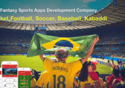 fantasy sports website design and development
