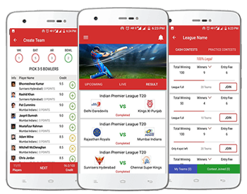 Fantasy cricket web and mobile app