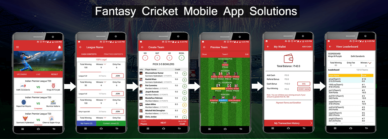 fantasy cricket software